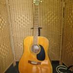 鈴木バイオリン アコースティックギター W-200